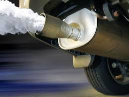 коли и околна среда