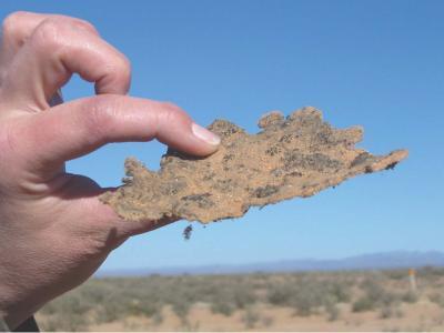 пустиня и климат
