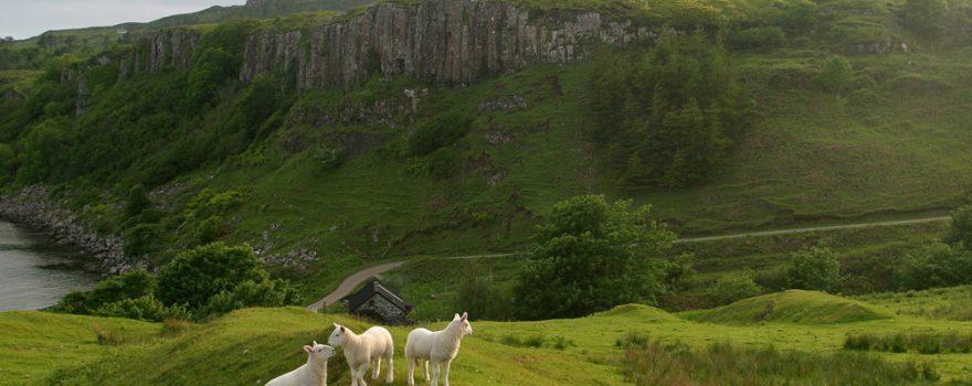 Scotland - Eigg