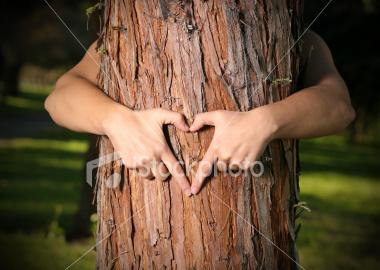 tree_lover